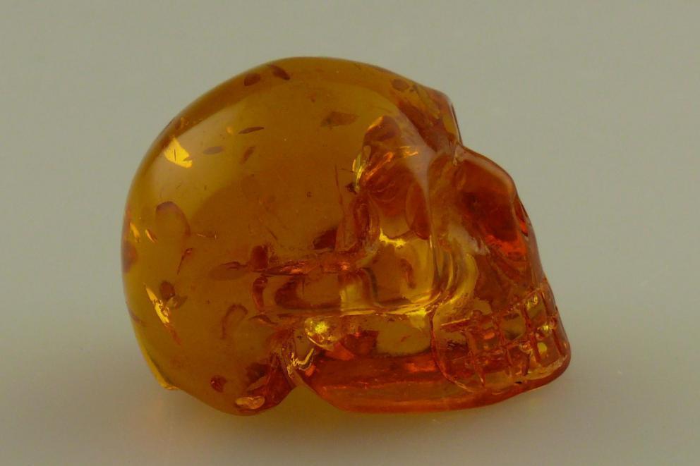 Barnsteen menselijke schedel, human schedel