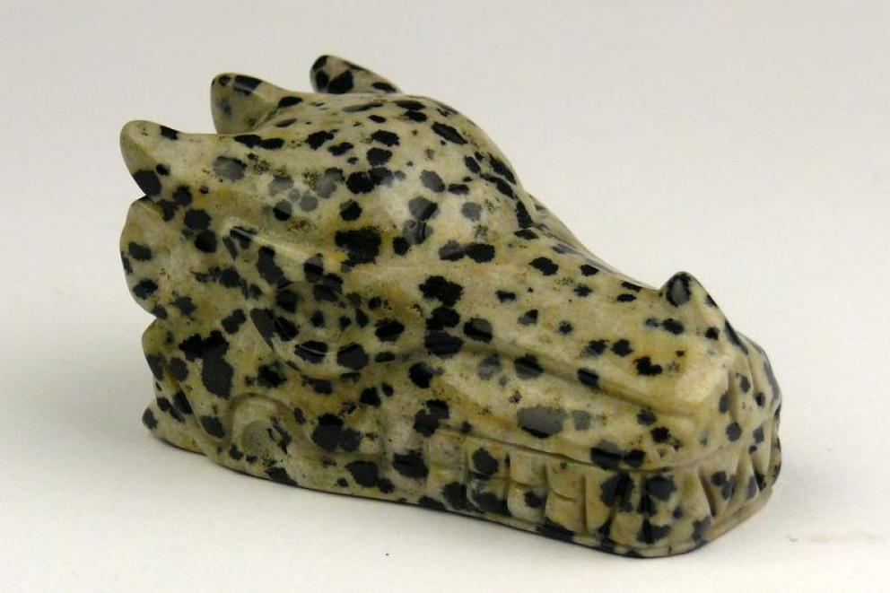 Jaspis (dalmatiër) edelsteen drakenschedel