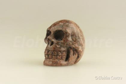 Luipaard Jaspis - menselijke schedel