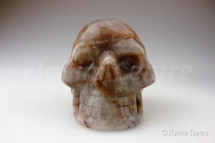 Agaat schedel, menselijke schedel - Aza