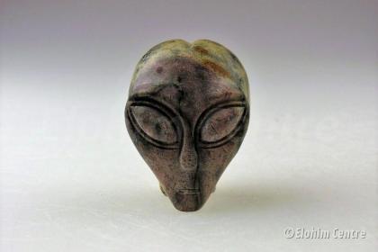 Aliën schedel - Cho Hua Jaspis