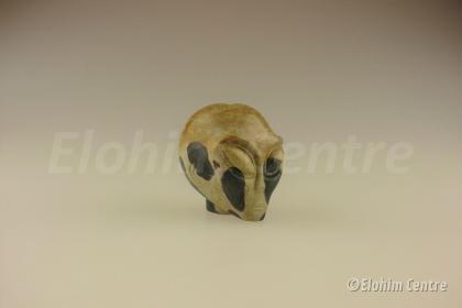 Alien schedel, chohua Jaspis