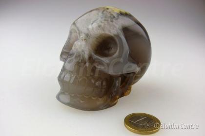 Galactische menselijke geode schedel - Agaat