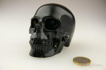Menselijke schedel, human schedel - Obsidiaan