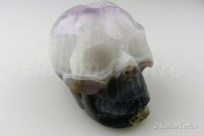 Galactische menselijke geode schedel - Omnia
