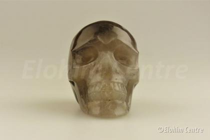 Menselijke schedel - Rookkwarts