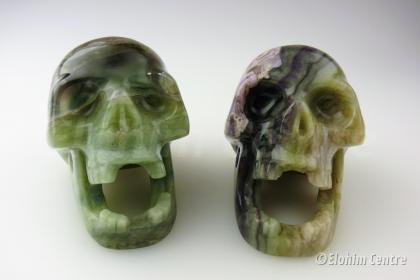 Fluo & Riet - menselijke schedels